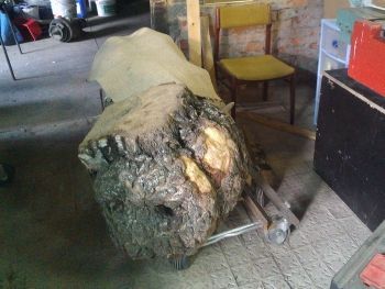 birch-burl-carving-02